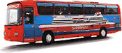 Buses - Superfast Ferries