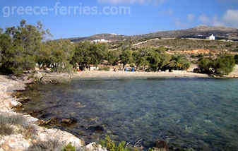 Agia Irini Beach Paros Island Cyclades Greece