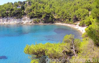 Xrysi Milia Beach Alonissos Greek Islands Sporades Greece